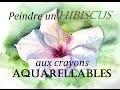 Fleur d'Hibiscus aux crayons aquarellables [Tutoriel]