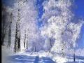 Paysages...Sous la neige.wmv