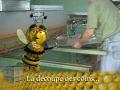 NEVIERE fabrication des toits de ruches