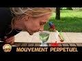 PENDULE DE NEWTON, Drinking bird, horloge éternelle et mouvement perpétuel