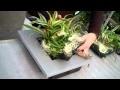 Comment changer la poche d'un cadre végétal WALLFLOWER ?