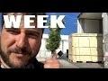 Tableau noir, Elec atelier, Sidamo, Terrasse #4weeksljvs
