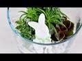 DIY - Le jardin de succulentes du Lapin | tutoriel facile de succulentes décoration pour Pâques #1