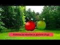 Pomme de reinette et pomme d'api | comptine