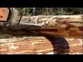 Construction d´une cabane en bois rond, en Laponie suédoise