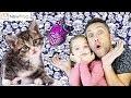 Réalisation d'un tableau de chat avec la Peinture 5D diamant Glitter ! Atelier créatif DIY !