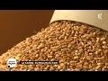 La farine : du moulin au pain