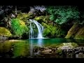 NATURE HAWAÏENNE - 13 Magnifiques Rivières et Cascades en Forêt - Détente Antistress Sommeil - 2H
