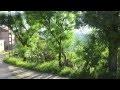 Paysages de Kabylie : Coucher de Soleil et Oliviers