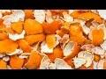 Tu ne Jetteras Plus Jamais Les Peaux D'oranges Après Avoir Regardé Cette Vidéo