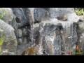 Cascade en FAUX ROCHERS :  Décoration autour d'une piscine