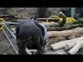 atelier d'artiste partie 42 - fabrication d'une échelle de toit alu bois à partir d'une échelle alu