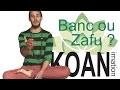 Banc ou Zafu ? KOANimation Brève 1