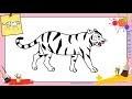 Dessin tigre 3 FACILE - Comment dessiner un tigre FACILEMENT etape par etape