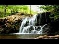 Musique Relaxante, Nature et Flûte pour Dormir