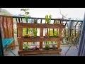 Jardin vertical avec une palette