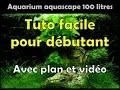 Aquarium aquascape 100 litres fr