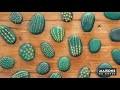 Comment créer un cactus artificiel avec des galets ? | Maisons du Monde