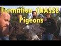 Formation à la chasse aux pigeons