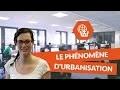 Le phénomène d'urbanisation - Histoire Géographie Collège - digiSchool