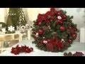 DIY  Noël : une couronne de Noël fait maison - Jardinerie Truffaut TV