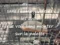 fabrication de piéges à pies et corbeaux