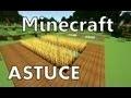 Minecraft : Tout savoir sur l'Agriculture