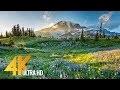 4K Mount Rainier National Park - Nature Relax Video, Summer Scenery - 2 HRS