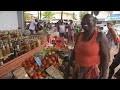 En Guadeloupe, les papilles des Antilles