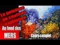 Au fonds des mers-Peinture au couteau - Cours complet-  Pascal Clus