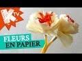 Fleurs en papier crépon - bouquet pour maman
