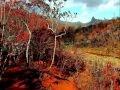paysages féeriques d'automne.wmv