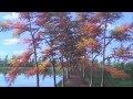 Peindre paysage d'automne rapidement classe leçon de peinture a l'acrylique
