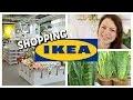SHOPPING VLOG - Soldes, décoration, plantes d'intérieur et autres achats   IKEA Shopping & Haul #8