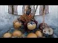 """Baba Sissoko Culture Griot """"Histoire de la Calebasse"""" dans la tradition Africaine"""