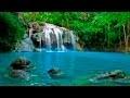 Musique Douce et Paysage Apaisant - Cascade Relaxant