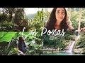 Las Pozas - Le jardin surréaliste d'Edward James au Mexique