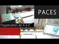 PACES | Mon organisation, méthode de travail, conseils UE par UE