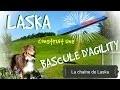 Laska vous montre comment construire une bascule d'agility [TUTO] #65