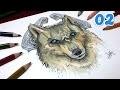 Coment Dessiner Loup Manga Galerie Creation
