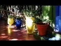 Marrakech le Jardin Majorelle et Le bleu Majorelle