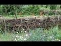 Une création originale : la palissade 'mur' de branchages