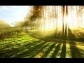 La magie de la musique, mélodie classique et de beaux paysages pour votre détente quotidienne