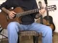 Voce Abusou (Fais comme l'oiseau) - Solo Guitar Cover