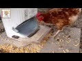 Tutoriel réalisation mangeoire automatique ( how to make automatic chicken feeder)