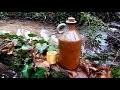 Verre a liqueur bushcraft - fabriquer son shooter des bois