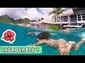 PAYSAGES INCROYABLES et Tortues 🌺 / Moorea Family vlog / Tahiti Quest