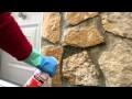Eliminer les mousses et micro-organismes - Baixens