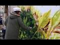 Mon TRES GRAND FORMAT au concours de peinture de Pussigny 2017