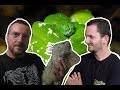 Viral scales : présentation de l'élevage de Morelia